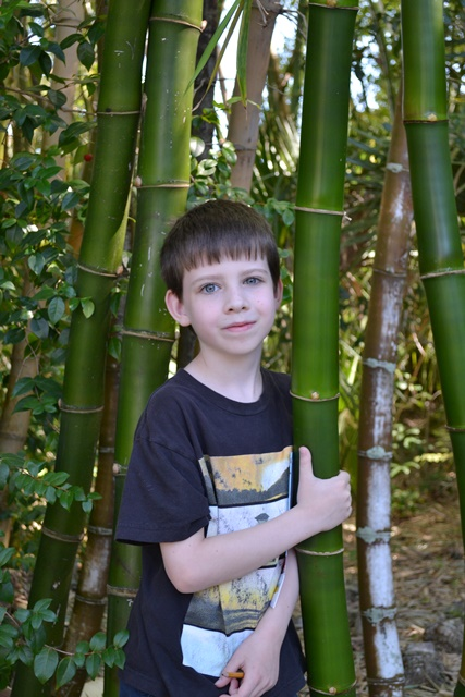 John with bamboo